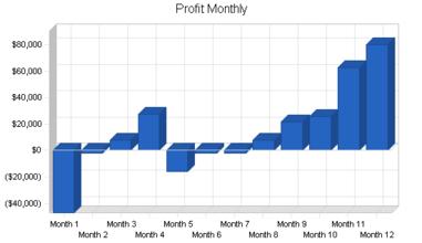 profit_1