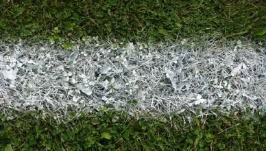 soccer инсайдеры